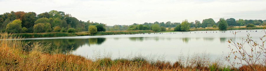 Arcot Pond - Northumberland