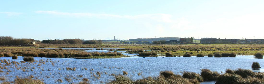 Druridge Pools - Northumberland
