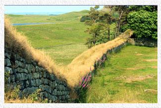 Hadrian's Wall - Northumberland