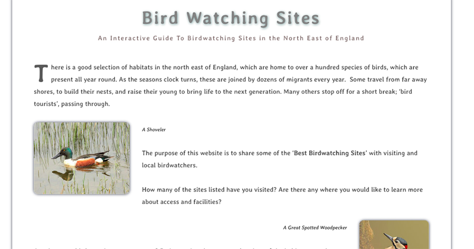 Bird Watching Sites